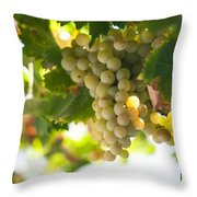 Harvest Time. Sunny Grapes Iv Throw Pillow by Jenny Rainbow