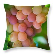 Harvest Time. Sunny Grapes Throw Pillow by Jenny Rainbow