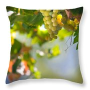 Harvest Time. Sunny Grapes V Throw Pillow by Jenny Rainbow