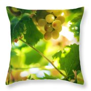 Harvest Time. Sunny Grapes VII Throw Pillow by Jenny Rainbow