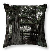 HAWAIIAN BANYAN TREES Throw Pillow by Daniel Hagerman