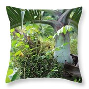 Hawaiian Palm Inflorescence  Throw Pillow by Karon Melillo DeVega