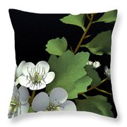 Hawthorne Throw Pillow by Cynthia Decker