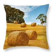 Hay Bales Throw Pillow by Amanda Elwell