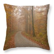 Hazy Forest In Autumn Throw Pillow by Matthias Hauser