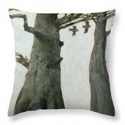 Heartwood Throw Pillow by Charlie Baird