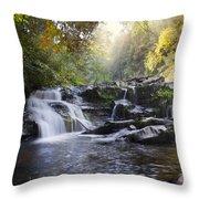 Heaven's Light Throw Pillow by Debra and Dave Vanderlaan