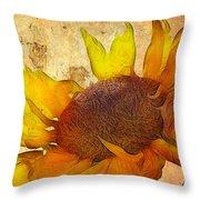 Helianthus Throw Pillow by John Edwards