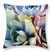Hens and Chicks series - Soft Tints Throw Pillow by Moon Stumpp