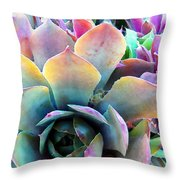 Hens And Chicks Series - Unfolding Throw Pillow by Moon Stumpp