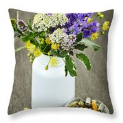 Herbal Medicine And Plants Throw Pillow by Elena Elisseeva