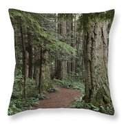 Heritage Forest Throw Pillow by Randy Hall
