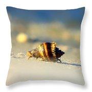 Hermit Crab  Throw Pillow by Debra Forand
