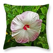 Hibiscus Throw Pillow by Aimee L Maher Photography and Art