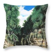 Hidden Canyon Throw Pillow by David Neace