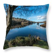Hidden Lake Throw Pillow by Adrian Evans