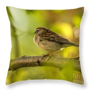 His Eye Is On The Sparrow Throw Pillow by Lois Bryan