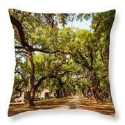 Historic Lane Throw Pillow by Steve Harrington