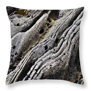 History Of Earth 11 Throw Pillow by Heiko Koehrer-Wagner