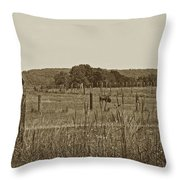 Home On The New Range Throw Pillow by Skip Willits