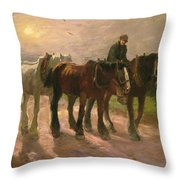 Homeward Throw Pillow by Harry Fidler