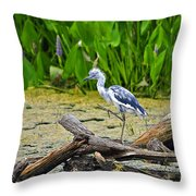 Hooligan Heron Throw Pillow by Al Powell Photography USA