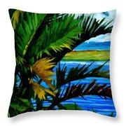 Ho'omaluhia 1 Throw Pillow by Douglas Simonson