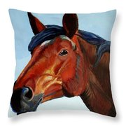 Horse Head Throw Pillow by Mike Jory