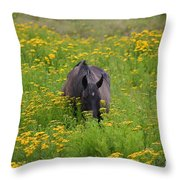 Horse Power Flower Power Throw Pillow by Bob Hislop