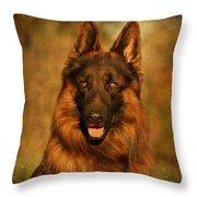 Hoss - German Shepherd Dog Throw Pillow by Sandy Keeton