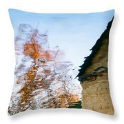 House By The Lake Throw Pillow by Alexander Senin