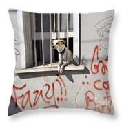 How Much Is That Doggie In The Window? Throw Pillow by Kurt Van Wagner
