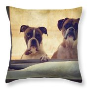 How Much Is That Doggie In The Window? Throw Pillow by Stephanie McDowell