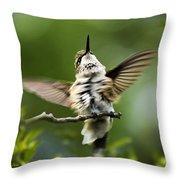 Hummingbird Happy Dance Throw Pillow by Christina Rollo