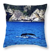 Humpback Whale Alaska Throw Pillow by Thomas R Fletcher