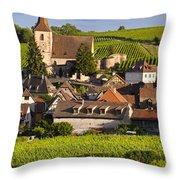 Hunawihr Throw Pillow by Brian Jannsen