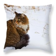 Hunter Throw Pillow by Theresa Tahara
