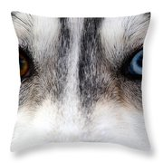 Husky Eyes Throw Pillow by Keith Allen