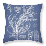 Hyalosiphonia Caespitosa Okamura Throw Pillow by Aged Pixel