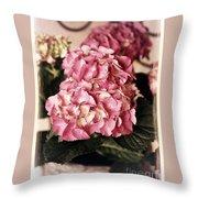 Hydrangea On The Veranda Throw Pillow by Carol Groenen
