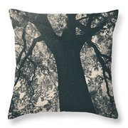 I Can't Describe Throw Pillow by Laurie Search