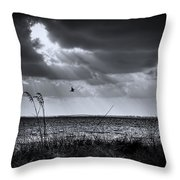 I Fly Away Throw Pillow by Marvin Spates