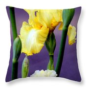 I Only Have Iris For You Throw Pillow by Kathy  White