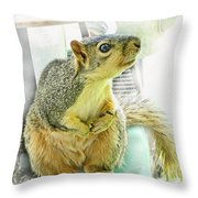 I wasn't me   The Cardinal did it Throw Pillow by Debbie Portwood