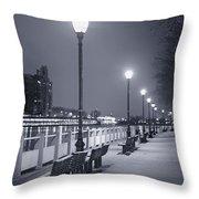I Wonder As I Wander Throw Pillow by Evelina Kremsdorf