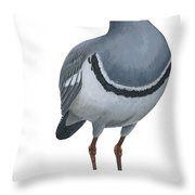 Ibisbill Throw Pillow by Anonymous