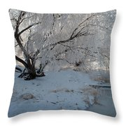 Ice Covered Tree And Creek In Montana Throw Pillow by Bruce Gourley