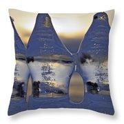 Ice Trio Throw Pillow by Sami Tiainen