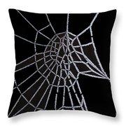 Ice Web Throw Pillow by Carol Lynch