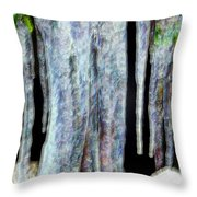 Icicles  Throw Pillow by Daniel Janda